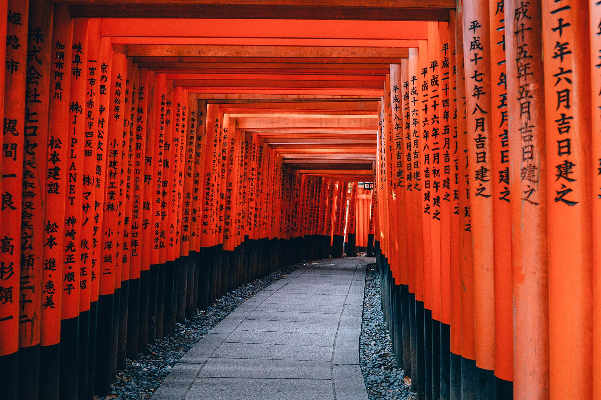 Fly to Tokyo for My Christmas 2019! And My Trip Plan Inspirations